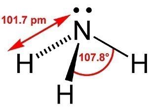 Ammonia In Koi Ponds