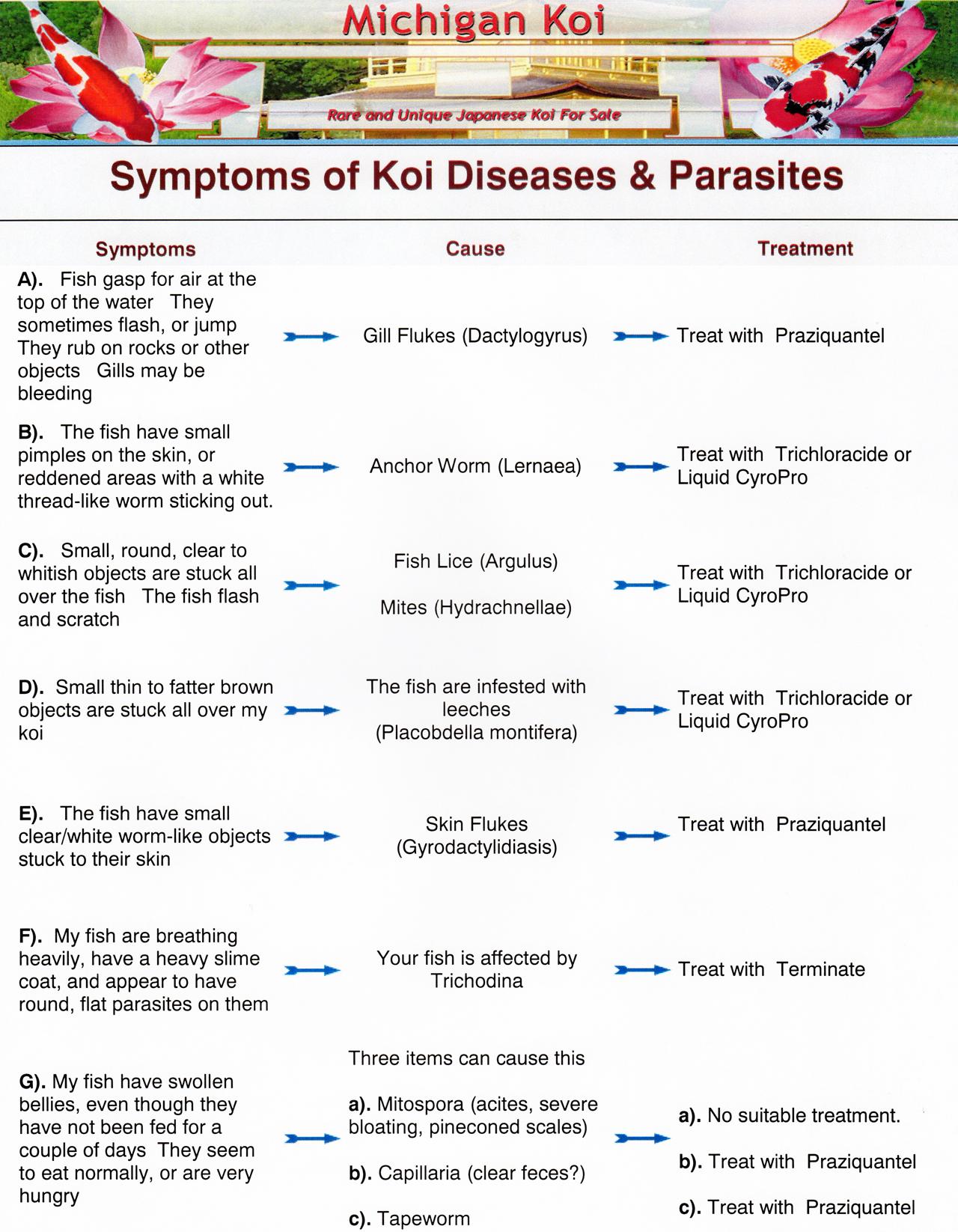 Disease Chart 400